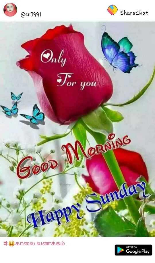 Good Morning Images Ishu Sharechat Funny Romantic Videos