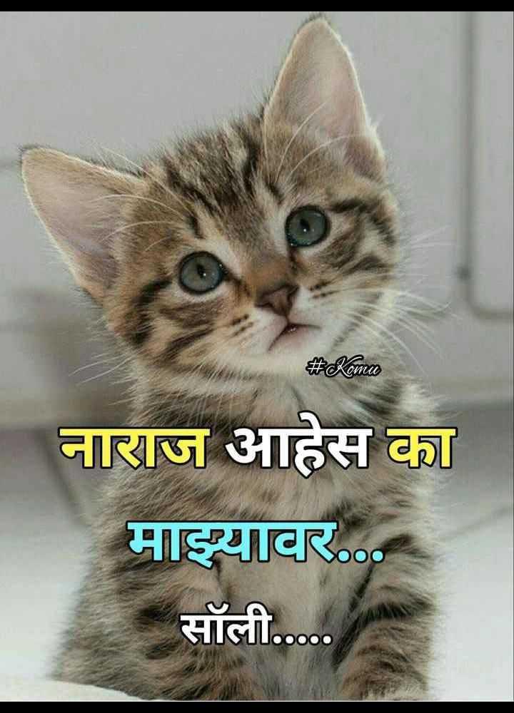👧Girls status - # Komu नाराज आहेस का माझ्यावर . . सॉली . . . . . - ShareChat