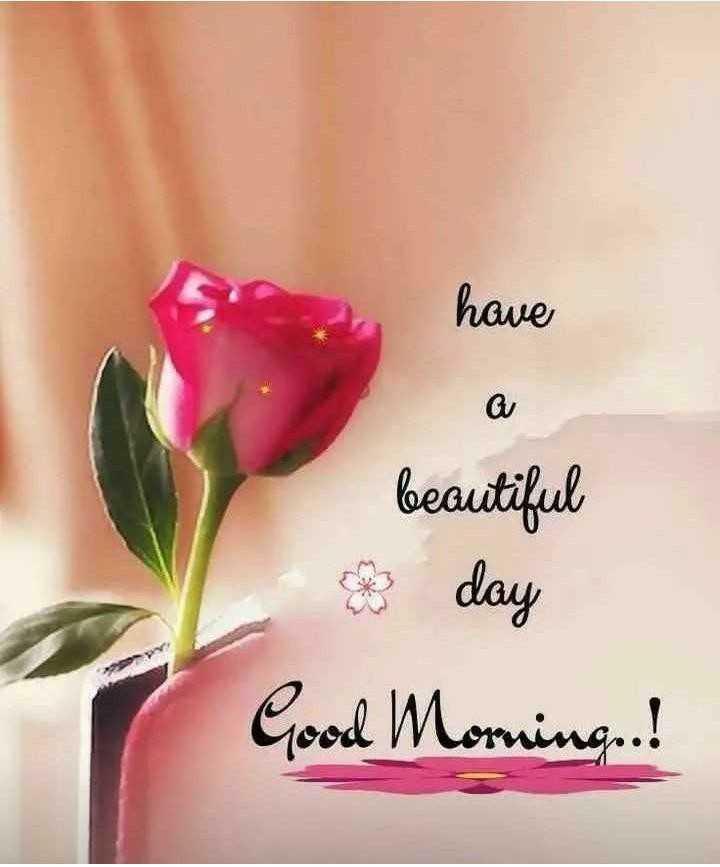 👧Girls status - have Q beautiful day Good Morning ! - ShareChat