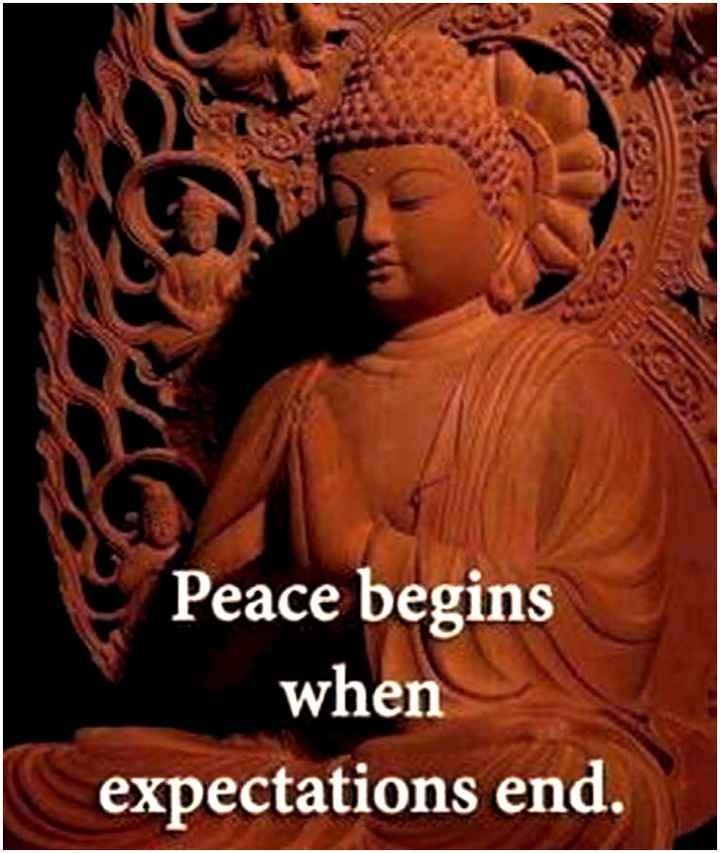 Golden quotes - Peace begins when expectations end . - ShareChat