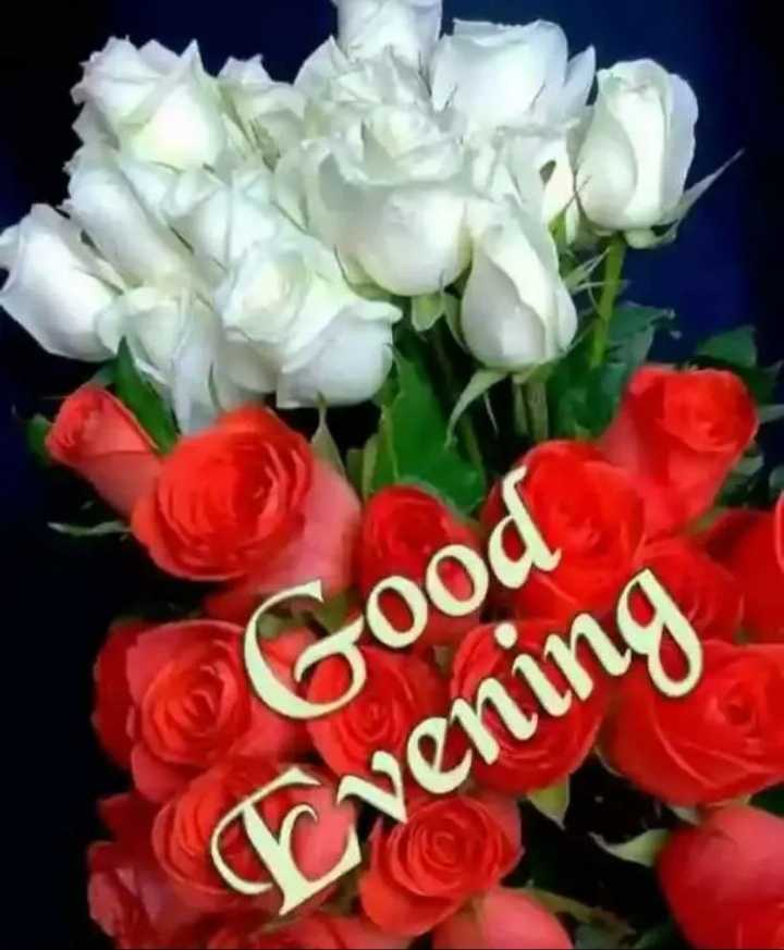 Good Evening - Good Cvening - ShareChat