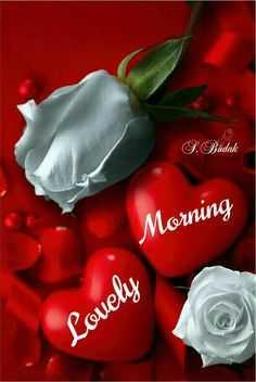 🌞Good Morning🌞 - . Budak Morning Lovely - ShareChat