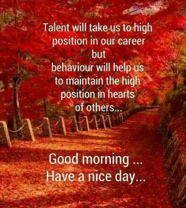 🌞Good Morning🌞 - Talent will take us to high position in our career but behaviour will help us to maintain the high position in hearts of others . . . Good morning . . Have a nice day . . . - ShareChat