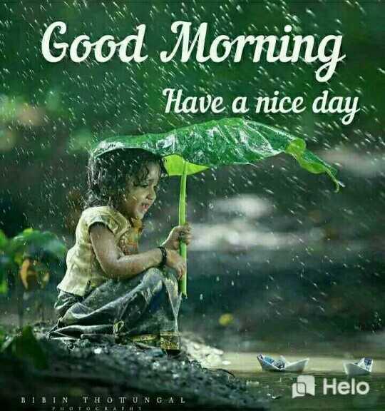 🌞Good Morning🌞 - Good Morning Have a nice day i BIBINTHO TUNGAL TO TOGLAHY - ShareChat