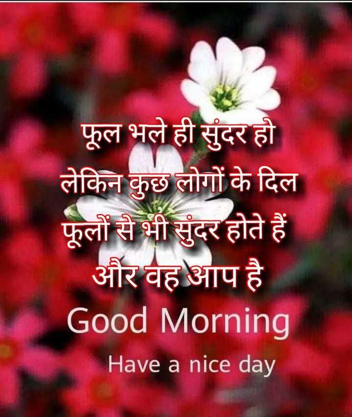 🌞 Good Morning🌞 - फूल भले ही सुंदर हो लेकिन कुछ लोगों के दिल फूलों से भी सुंदर होते हैं और वह आप है Good Morning Have a nice day - ShareChat