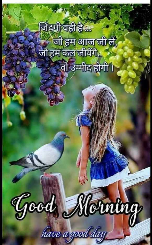 🌞 Good Morning🌞 - जिंदगी वही है . . . । जो हम आज जी ले , जो हम कल जीयेंगे . . वो उम्मीद होगी । Good Morning have a good day have a good dan - ShareChat