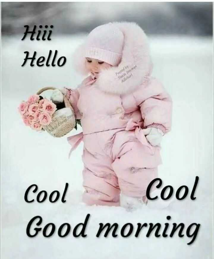 🌞 Good Morning🌞 - Hili Hello Porced by Tan Sy Cool cool Good morning - ShareChat