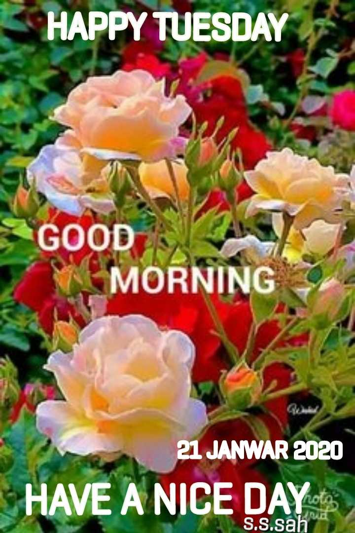 🌞 Good Morning🌞 - HAPPY TUESDAY GOOD MORNING 21 JANWAR 2020 HAVE A NICE DAY Yhoto S . S . sah - ShareChat