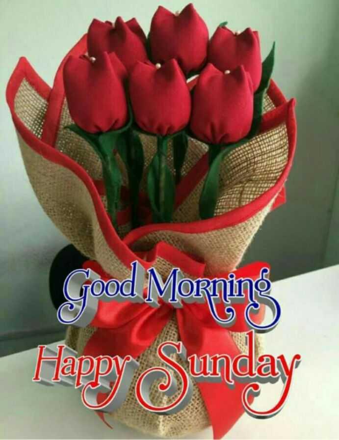 🌞 Good Morning🌞 - Good Morning Happy Sunday - ShareChat