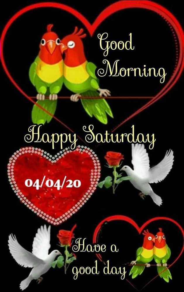 🌞 Good Morning🌞 - O Good Morning Happy Saturday 04 / 04 / 20 SO . . . . . . . . . . . Eeeee BOOOOOO Have a Lave a good day her - ShareChat