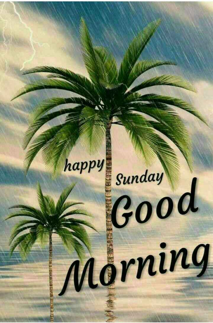 🌞Good Morning🌞 - happy Sunday Good Morning - ShareChat
