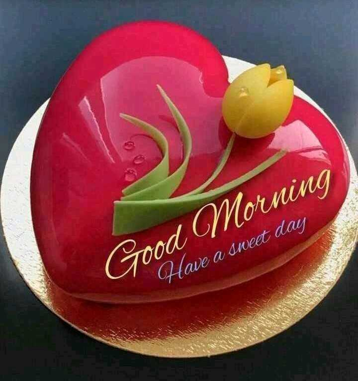 🌞 Good Morning🌞 - Good Morning Have a sweet day - ShareChat