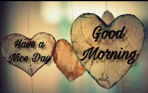 🌅 Good Morning - Have a Nice Day Good Morning - ShareChat