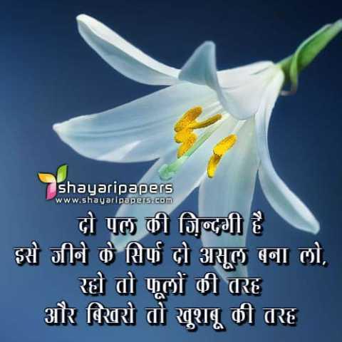 🌞 Good Morning🌞 - shayaripapers www . shayaripapers . com दो पल की जिन्दगी है ' इसे जीने के सिर्फ दो असूल बना लो , रहो तो फूलों की तरह और बिखरो तो खूशबू की तरह - ShareChat