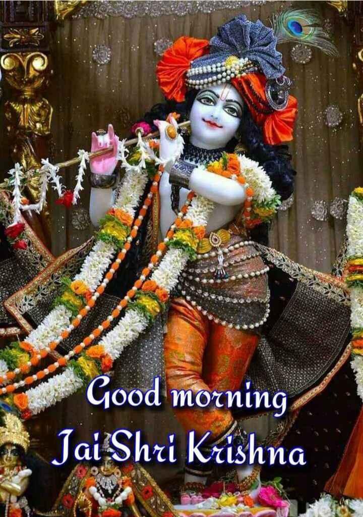 🌞 Good Morning🌞 - Good morning Jai Shri Krishna - ShareChat