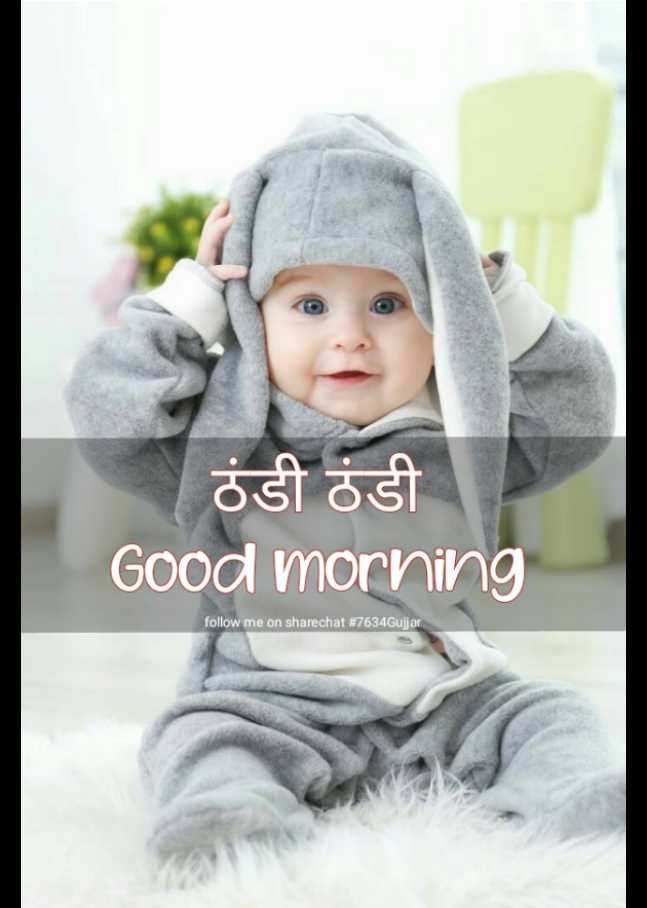 🌞 Good Morning🌞 - ठंडी ठंडी Good morning follow me on sharechat # 7634Gujjar - ShareChat