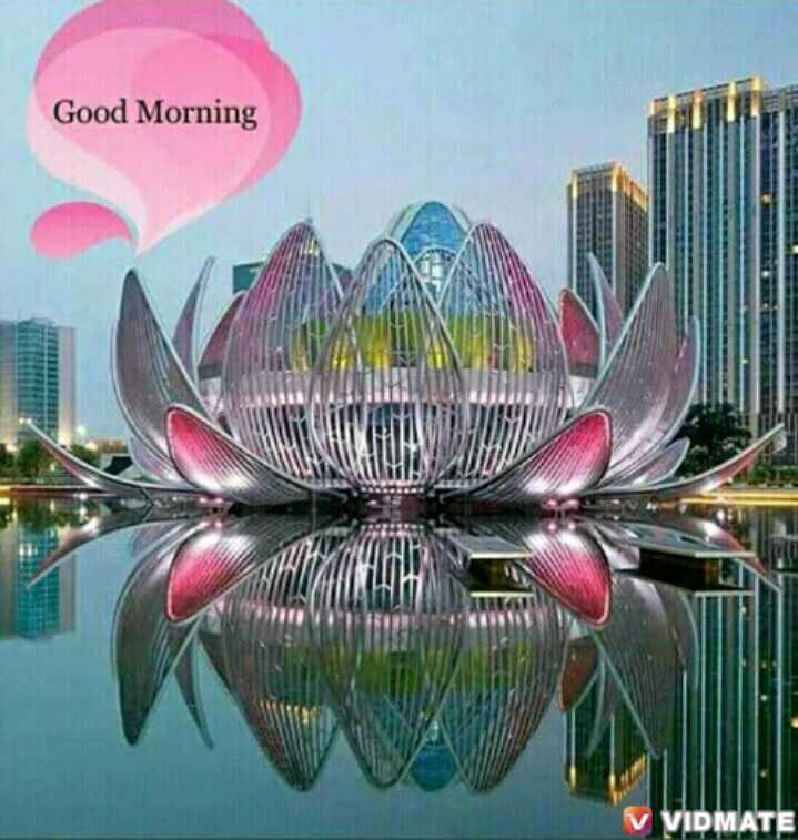 🌞Good Morning🌞 - Good Morning v VIDMATE - ShareChat