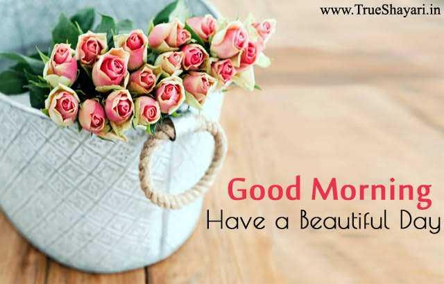 🌞 Good Morning🌞 - www . TrueShayari . in Good Morning Have a Beautiful Day - ShareChat