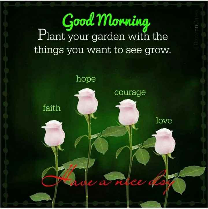 🌞Good Morning🌞 - Good Morning Plant your garden with the things you want to see grow . BronnCares hope courage faith love fee der - ShareChat