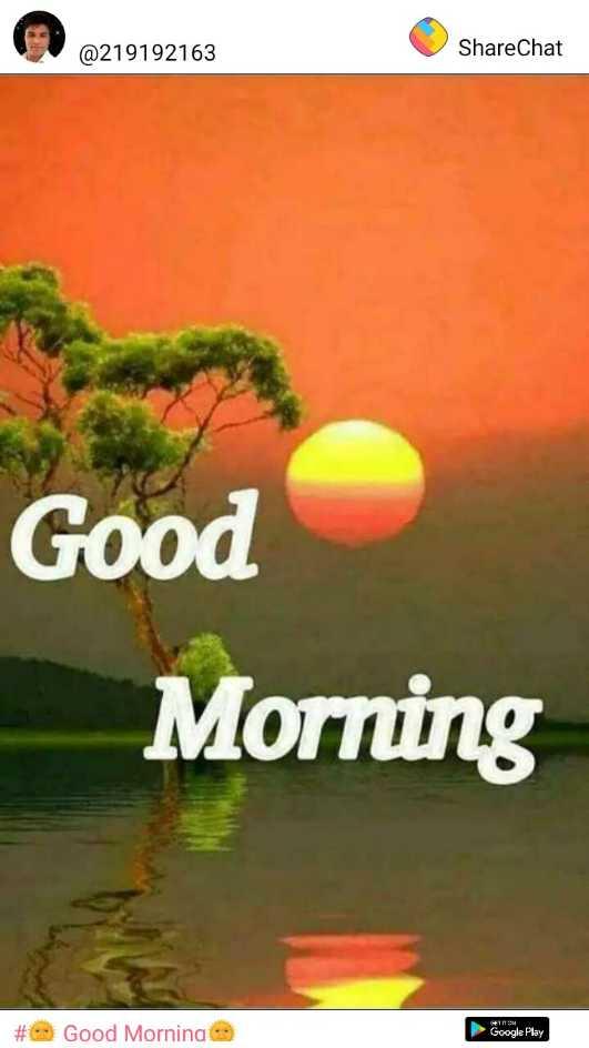 🌞 Good Morning🌞 - @ 219192163 ShareChat Good Moring # Good Mornina Google Play - ShareChat