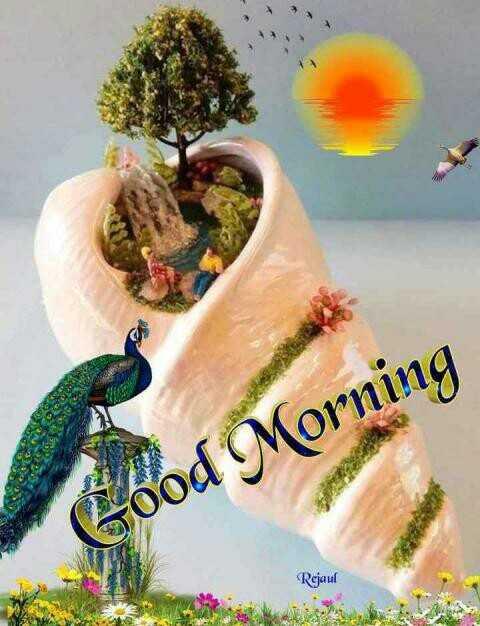 🌞Good Morning🌞 - Good Morning Rejaul - ShareChat