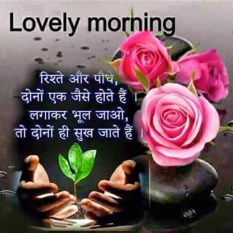 🌞 Good Morning🌞 - Lovely morning रिश्ते और पौधे , दोनों एक जैसे होते हैं लगाकर भूल जाओ , तो दोनों ही सुख जाते हैं - ShareChat