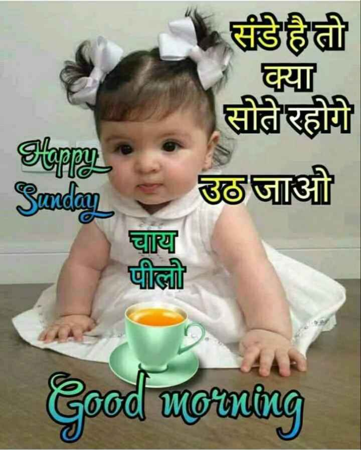 🌞 Good Morning🌞 - - संडे है तो क्या सोते रहोगे उठ जाओ Sappy Sunday चाय पीलो Good morning - ShareChat