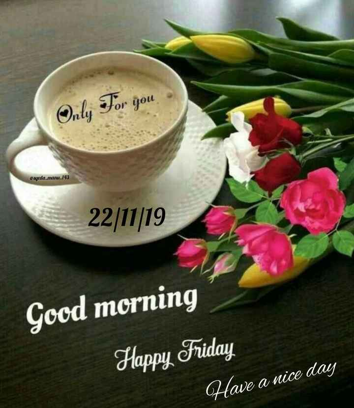 🌞 Good Morning🌞 - Only For you @ syeda _ manu _ 143 22 / 11 / 19 Good morning Happy Friday Have a nice day - ShareChat