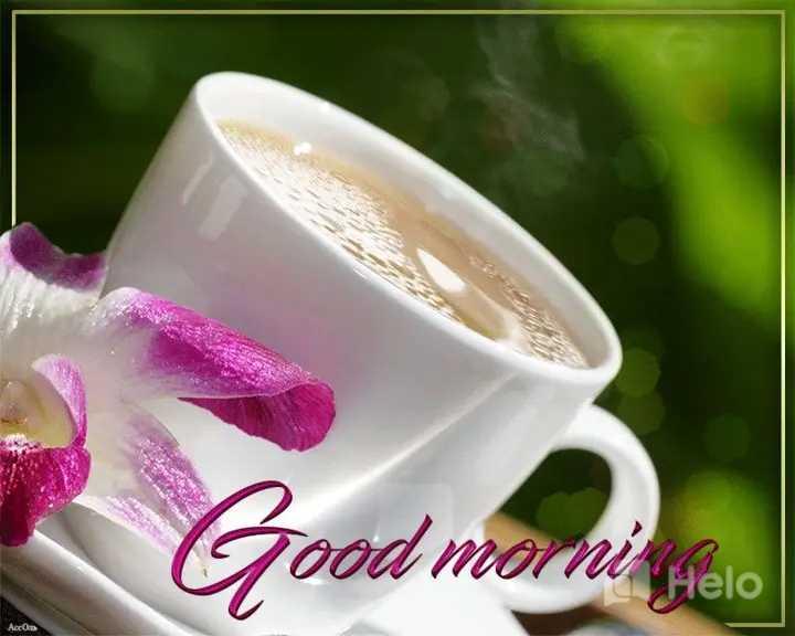 🌞 Good Morning🌞 - Good morna morni - ShareChat