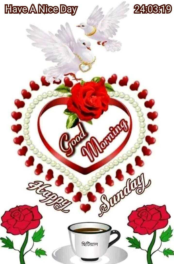 🌞Good Morning🌞 - Have A Nice Day 24 : 03 : 19 COCO Coco food Morning Happt oooooooooo Sunday ছিটিয়াল - ShareChat