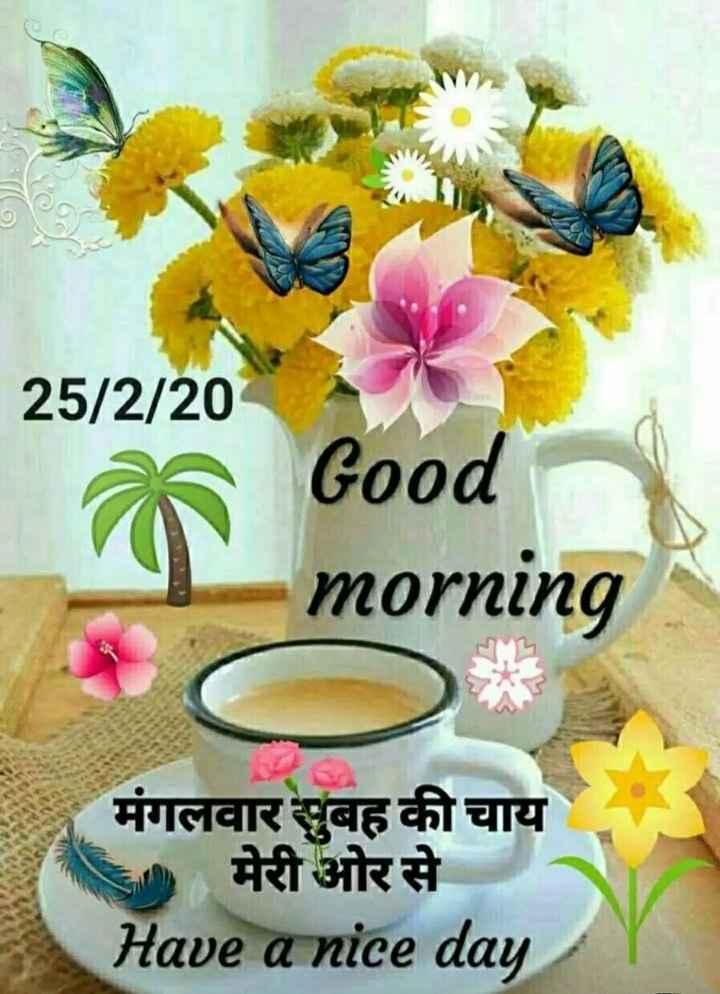 🌞 Good Morning🌞 - 25 / 2 / 20 Good morning मंगलवार सुबह की चाय मेरी ओर से Have a nice day - ShareChat