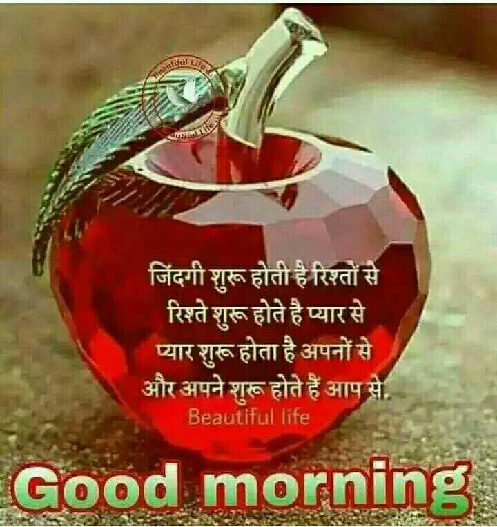 Good Morning - जिंदगी शुरू होती है रिश्तों से रिश्ते शुरू होते है प्यार से प्यार शुरू होता है अपनों से और अपने शुरू होते हैं आप से . Beautiful life Good morning - ShareChat