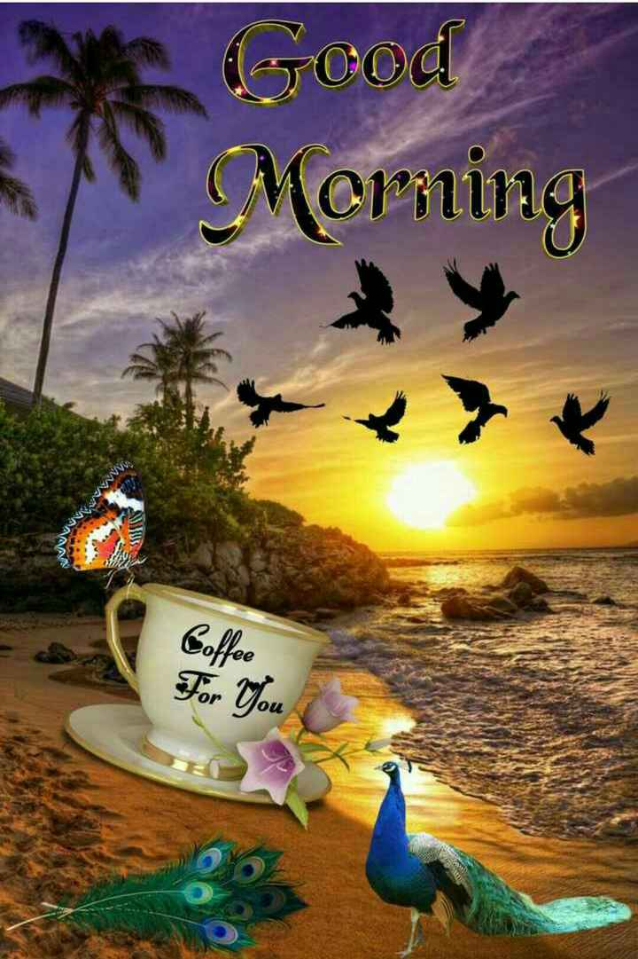 🌞Good Morning🌞 - Good Merining AN Coffee For You - ShareChat