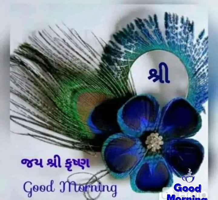 🌅 Good Morning - જય શ્રી કૃષ્ણ Good Morning જીનો Good Maoni - ShareChat