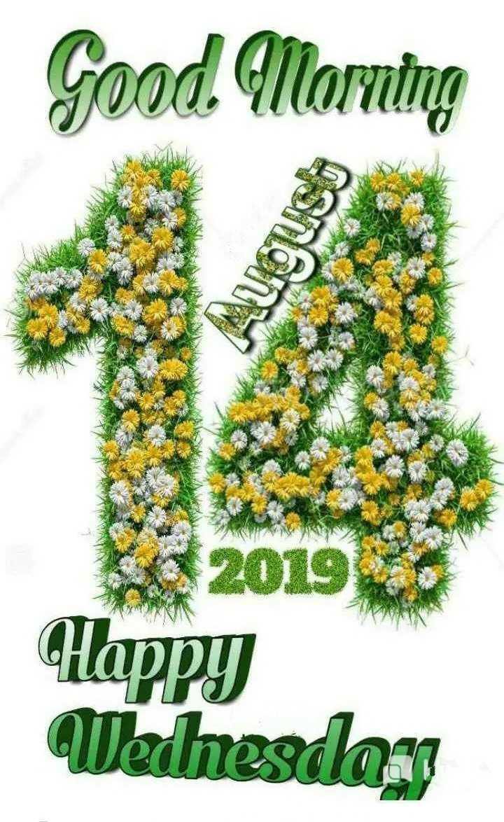 🌞Good Morning🌞 - Good Morning Brelon 2019 Happy Werhesday - ShareChat