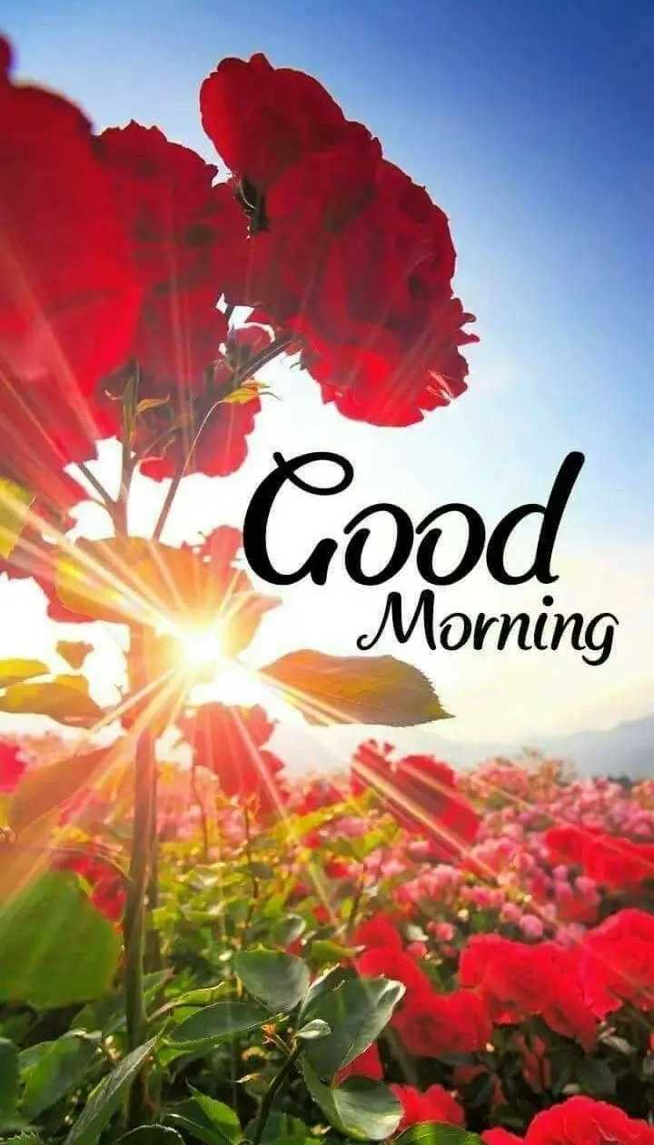 Good Morning - Good Cood Morning - ShareChat