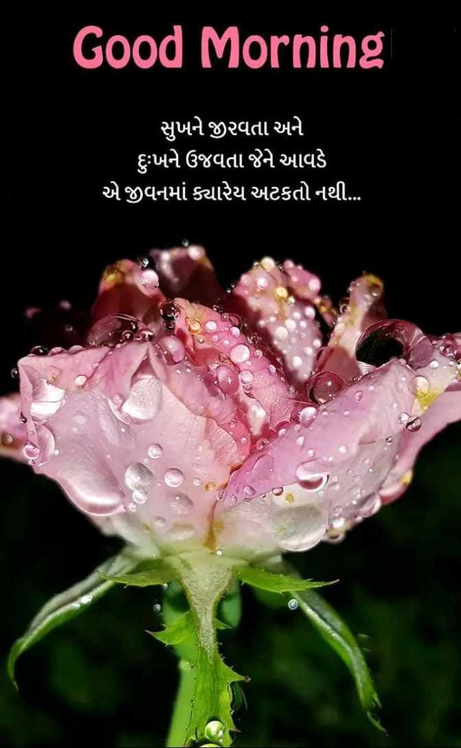 🌅 Good Morning - Good Morning સુખને જીરવતા અને ' દુઃખને ઉજવતા જેને આવડે ' એ જીવનમાં ક્યારેય અટકતો નથી . ... - ShareChat