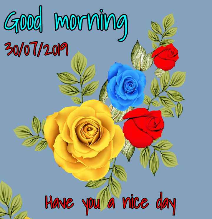🌞Good Morning🌞 - Good morning 30 / 07 / 2019 Have you a nice day - ShareChat