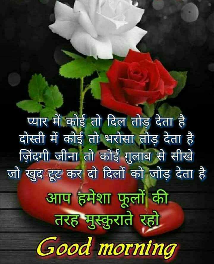 🌞 Good Morning🌞 - ' प्यार में कोई तो दिल तोड़ देता है दोस्ती में कोई तो भरोसा तोड़ देता है जिंदगी जीना तो कोई गुलाब से सीखे जो खुद टूट कर दो दिलों को जोड़ देता है आप हमेशा फूलों की तरह मुस्कुराते रहो Good morning - ShareChat
