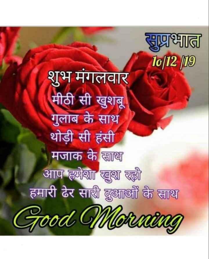 🌞 Good Morning🌞 - सुप्रभात 10 | 12 19 शुभ मंगलवार मीठी सी खुशबू गुलाब के साथ थोड़ी सी हंसी मजाक के साथ आप हमेशा खुश रहो हमारी ढेर सारी दुआओं के साथ Good Morning - ShareChat