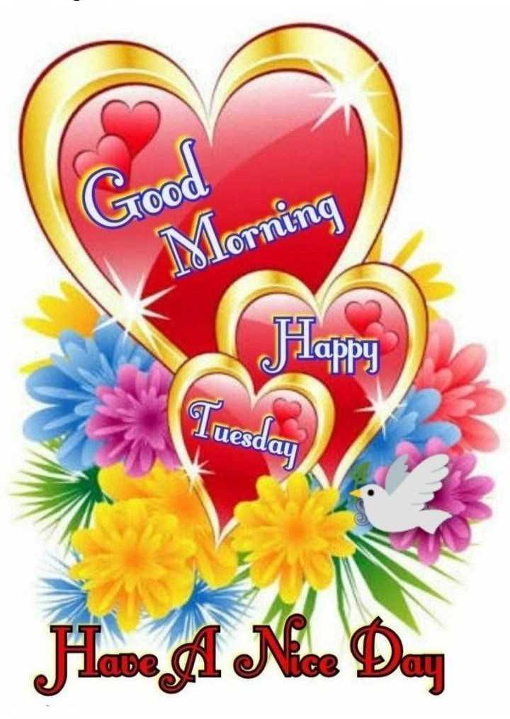🌞Good Morning🌞 - STOOd Morning Plappy Tuesday - ShareChat