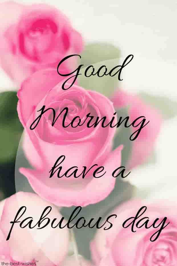 🌞 Good Morning🌞 - Good Morning have a fabulous day the - best - wishes - ShareChat