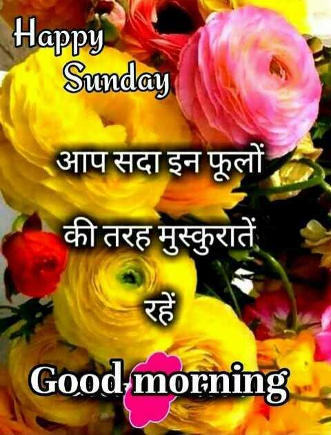 🌞 Good Morning🌞 - Happy Sunday आप सदा इन फूलों की तरह मुस्कुरातें Good morning - ShareChat