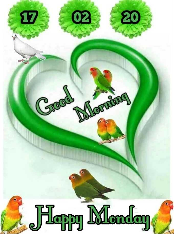 🌞 Good Morning🌞 - 17 02 20 Jooo ! Morning Happy Monday - ShareChat