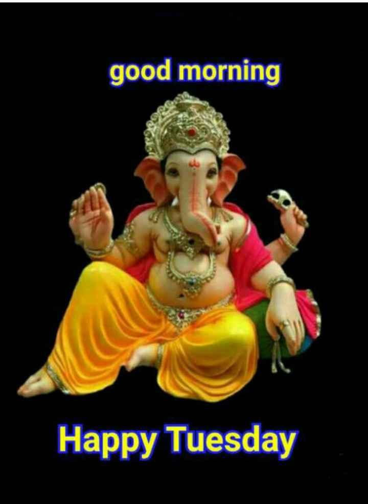 🌞 Good Morning🌞 - good morning 36 Happy Tuesday - ShareChat