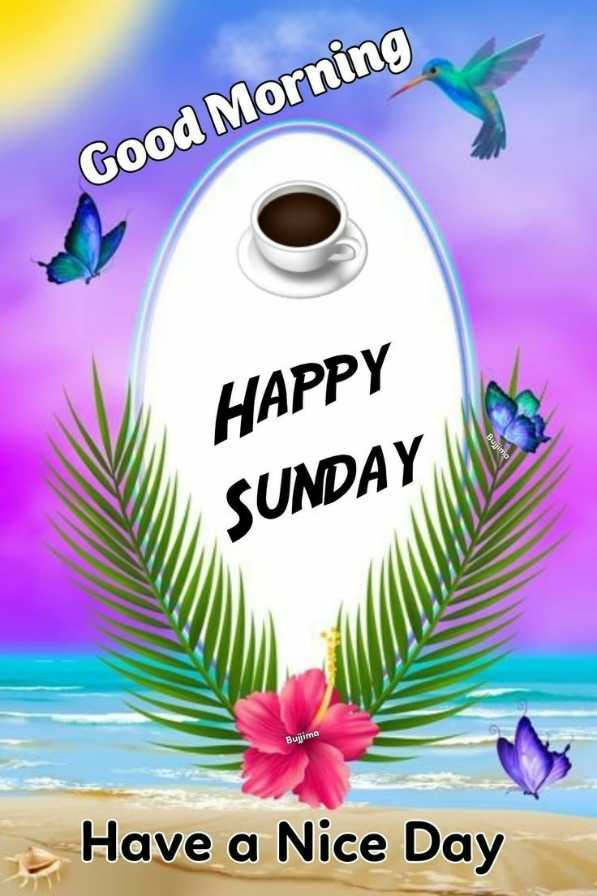 🌞 Good Morning🌞 - Good Morning HAPPY SUNDAY Bujima Have a Nice Day - ShareChat
