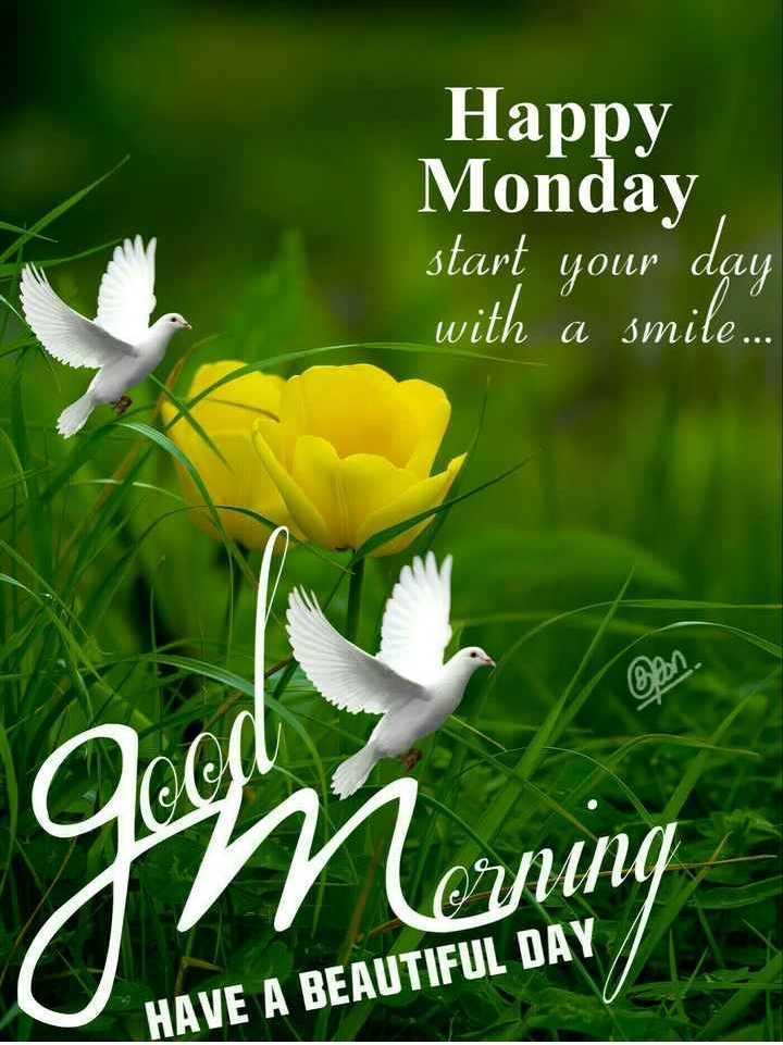 🌞 Good Morning🌞 - Happy Monday start your day with a smile . . ir HAVE A BEAUTIFUL DAY - ShareChat