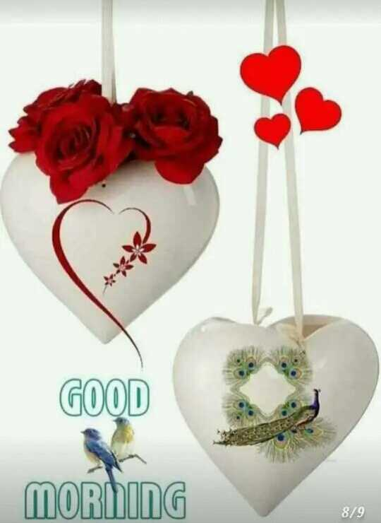 🌞 Good Morning🌞 - GOOD MORNING 8 / 9 - ShareChat