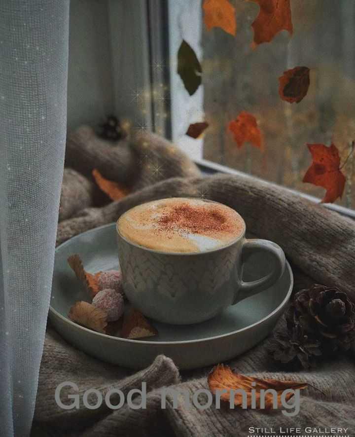 🌅 Good Morning - Good Orning STILL LIFE GALLERY - ShareChat