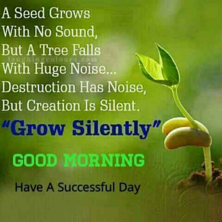 Good Morning - A Seed Grows With No Sound , But A Tree Falls With Huge Noise . . . Destruction Has Noise , But Creation Is Silent . Grow Silently GOOD MORNING Have A Successful Day - ShareChat